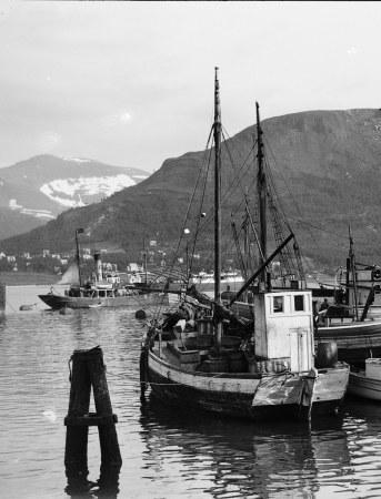 Polar-Reisen 1925 und 1928