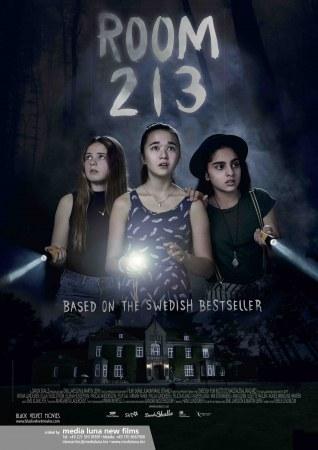 Zimmer 213