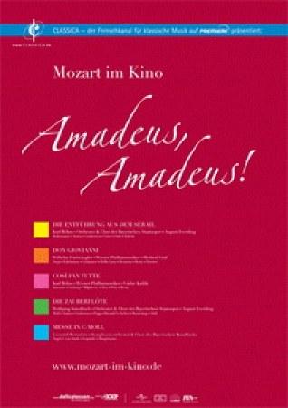 Amadeus, Amadeus: Die Entführung aus dem Serail