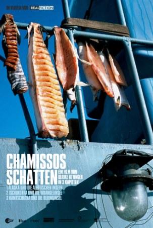 Chamissos Schatten: Kapitel 3 - Kamtschatka