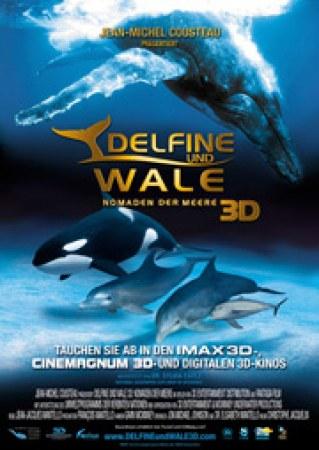 Delfine und Wale 3D