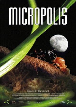 Micropolis - Titanen der Insektenwelt