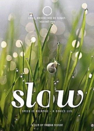 Slow - Langsam ist das neue Schnell
