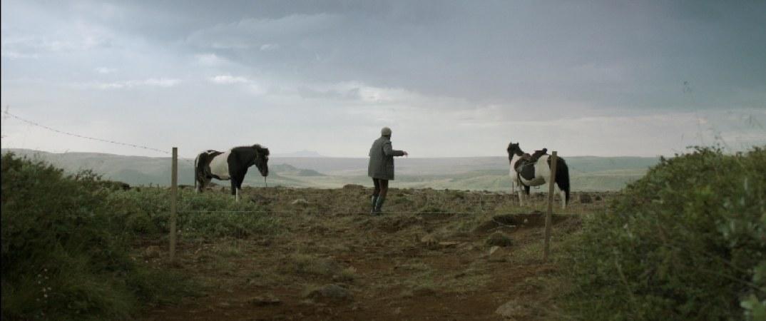 Von Pferden und Menschen