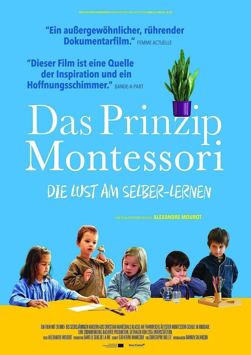 Greifswald Kino Programm