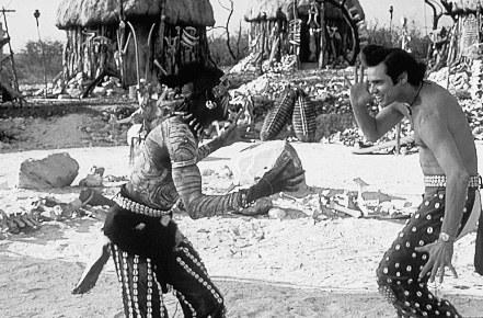 Ace Ventura - Jetzt wird's wild - Bild 1