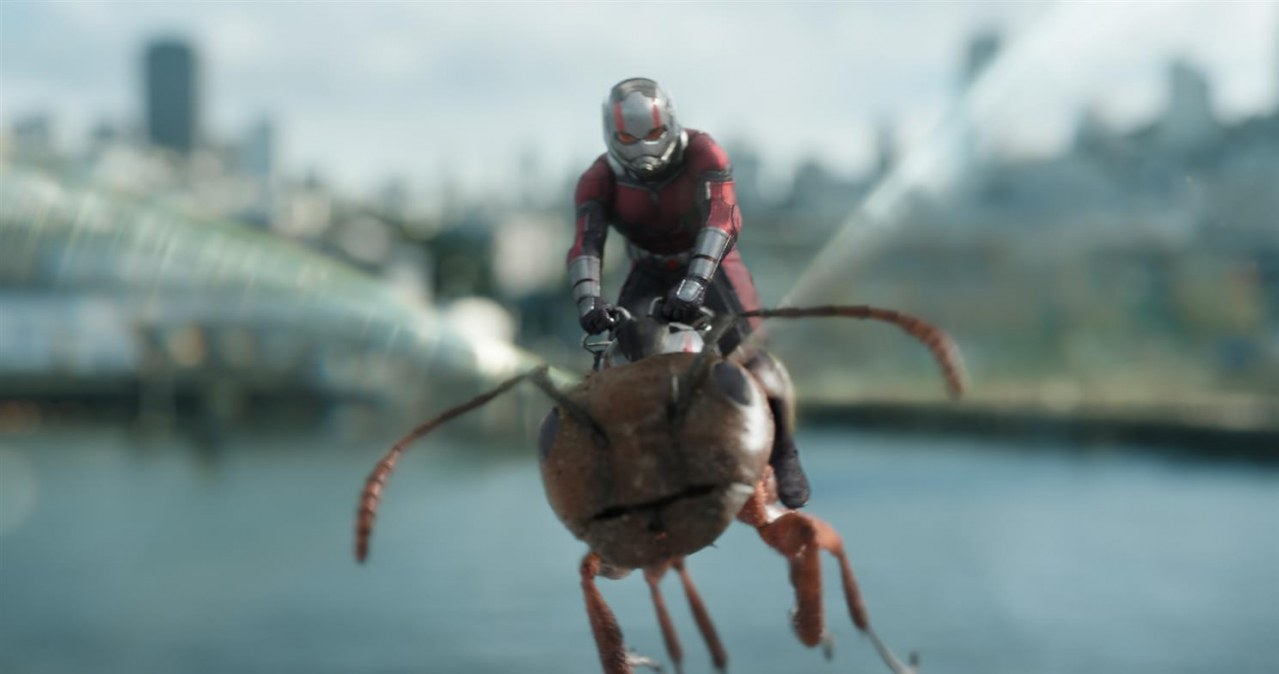 Ant-Man and the Wasp - Bild 10