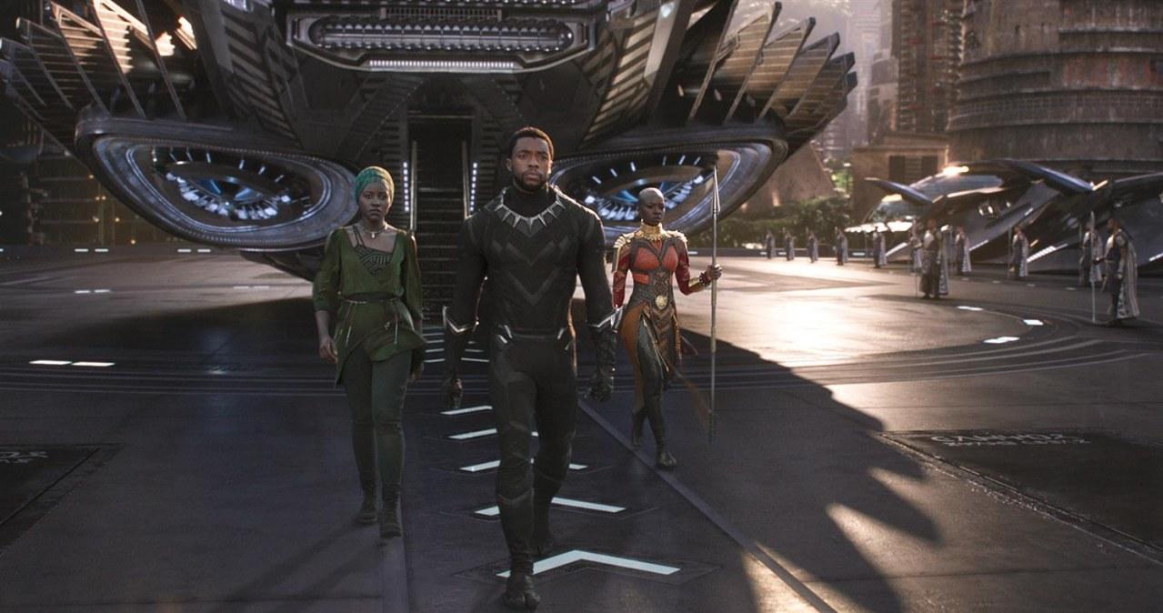 Black Panther - Bild 1