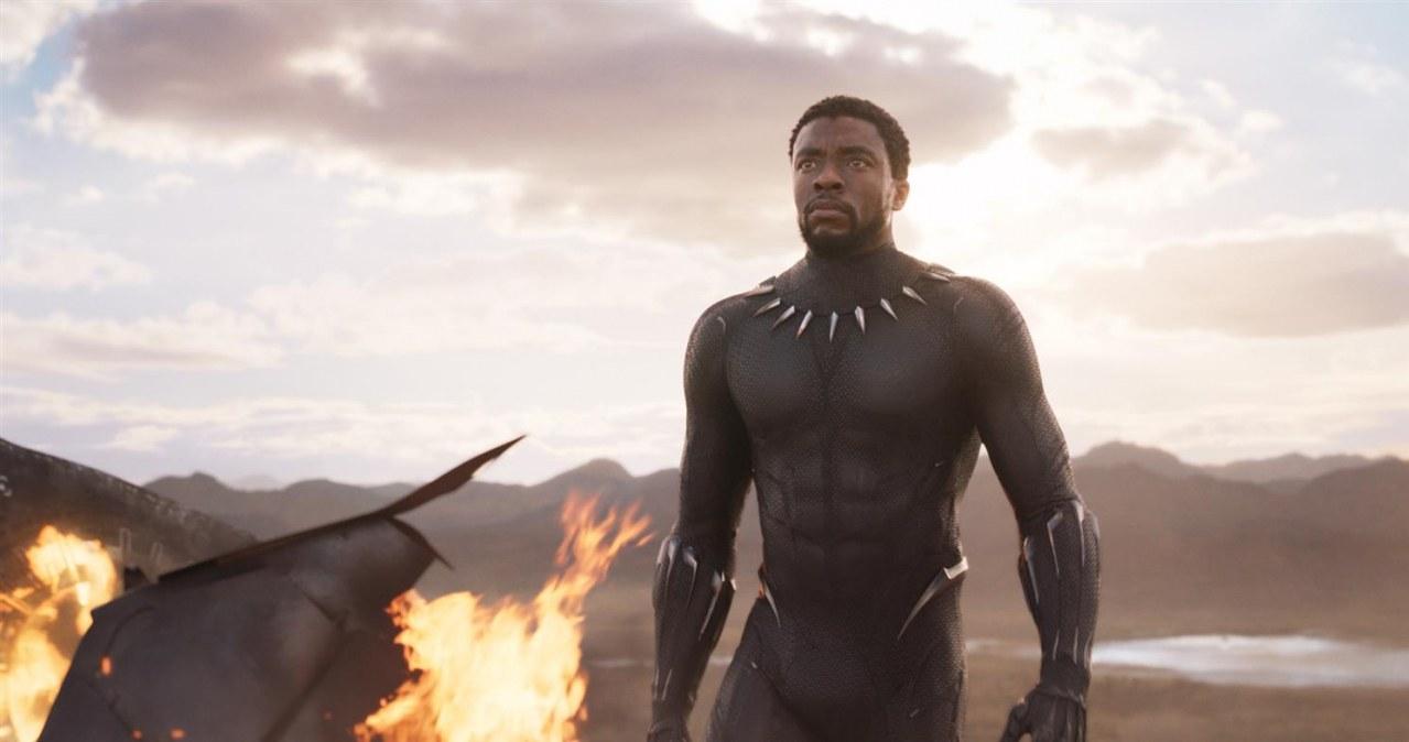 Black Panther - Bild 9