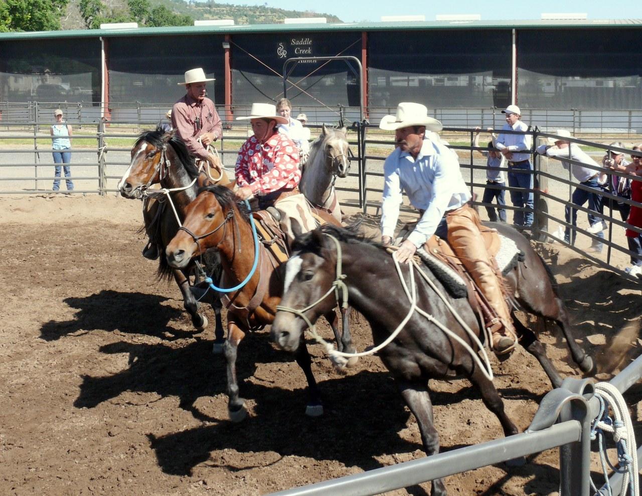 Buck - Der wahre Pferdeflüsterer - Bild 3