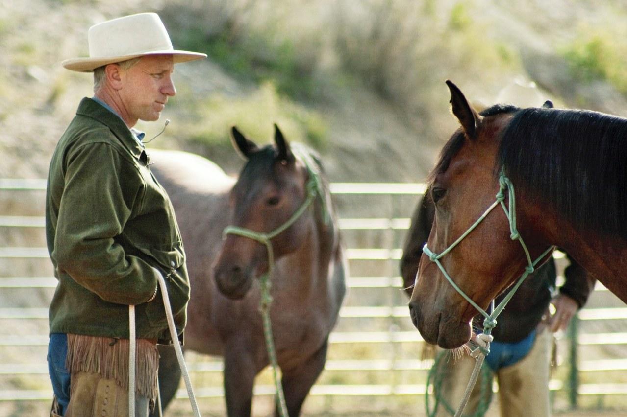 Buck - Der wahre Pferdeflüsterer - Bild 4