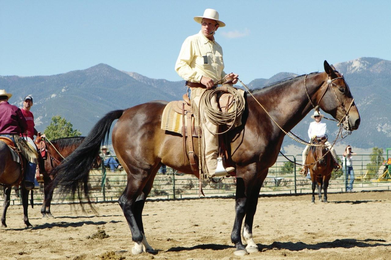 Buck - Der wahre Pferdeflüsterer - Bild 9