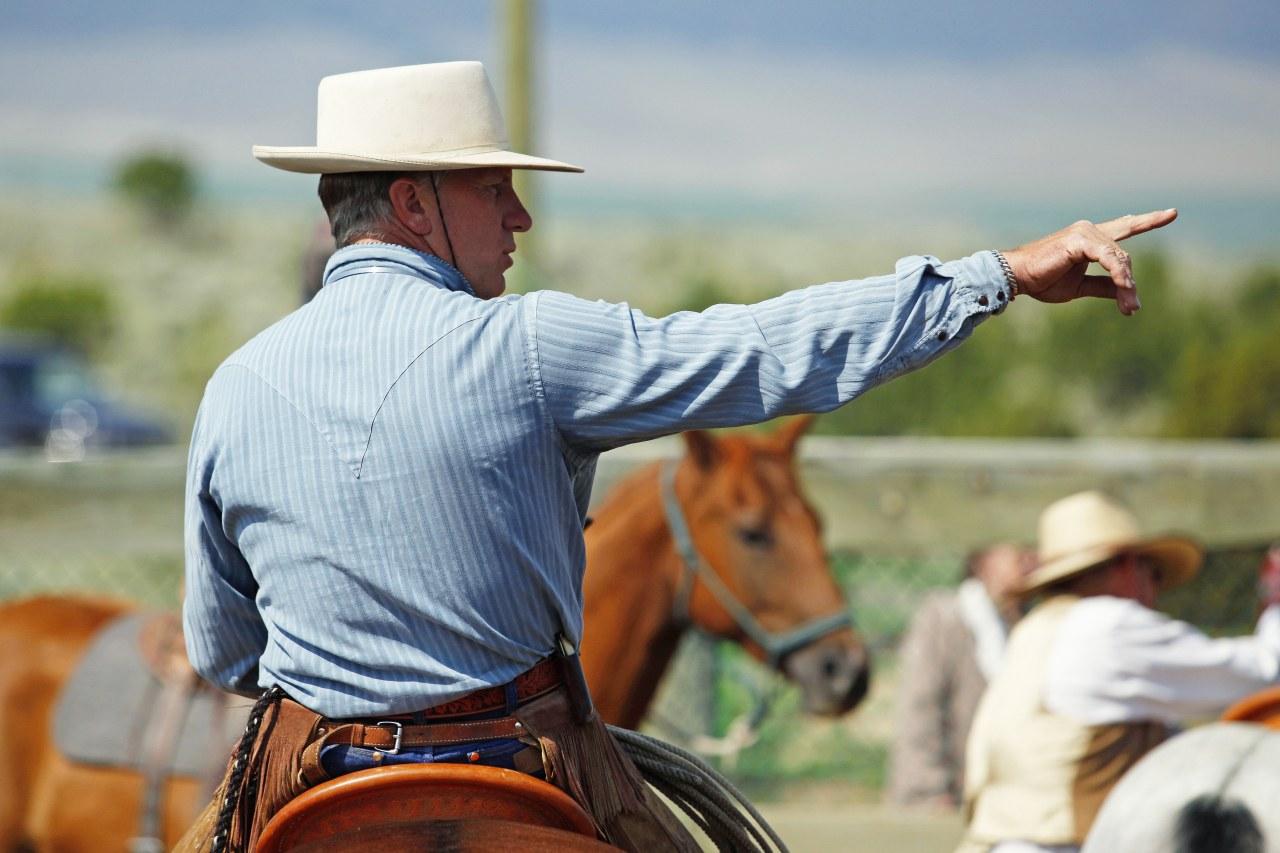 Buck - Der wahre Pferdeflüsterer - Bild 13