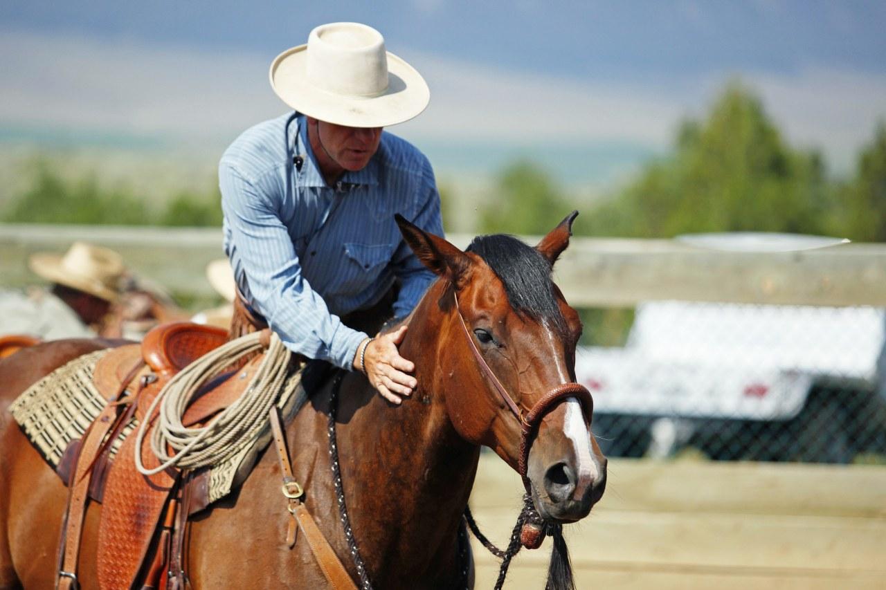 Buck - Der wahre Pferdeflüsterer - Bild 14