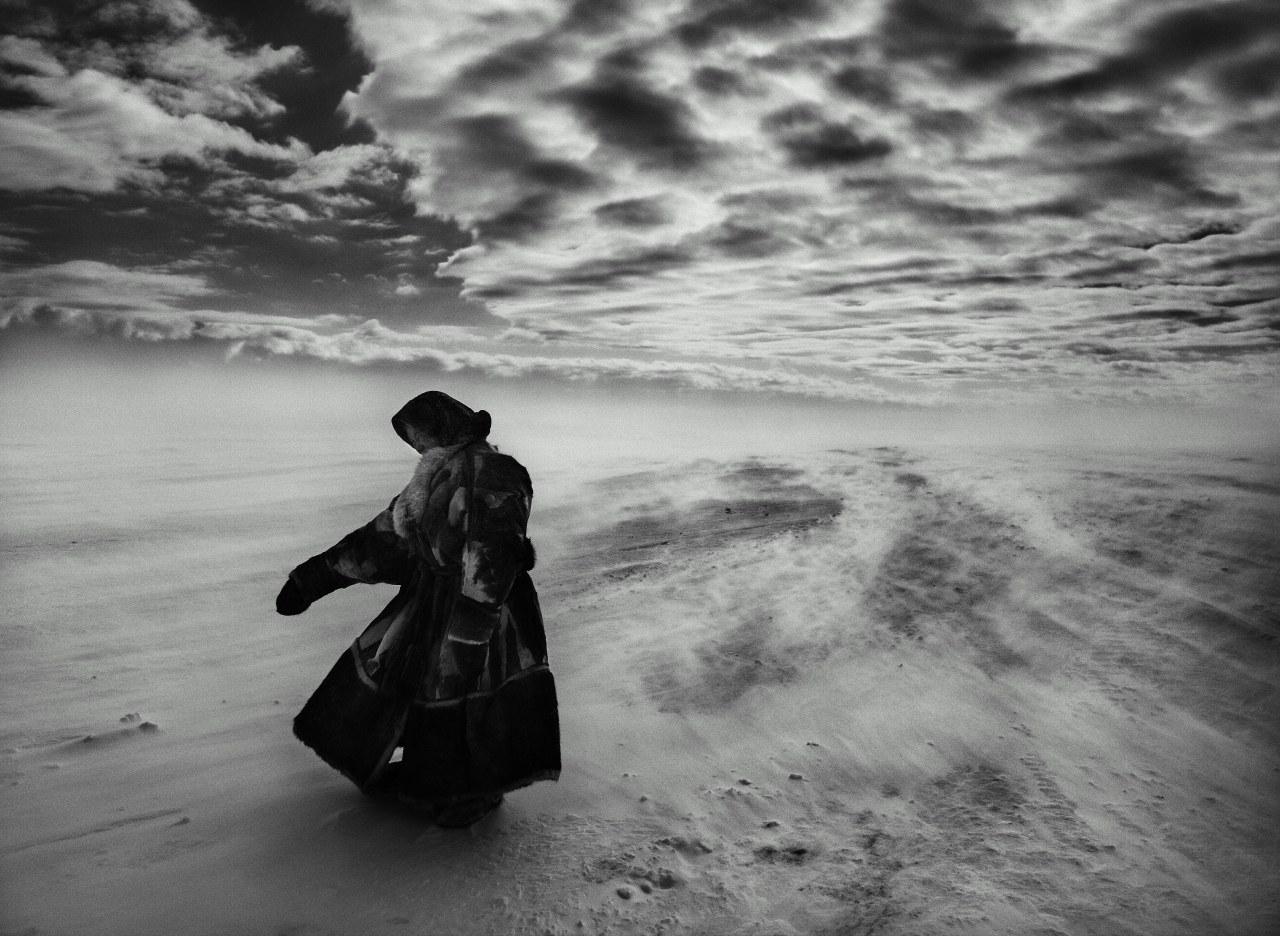Das Salz der Erde - Bild 8