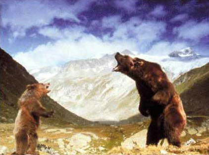 Der Bär - Bild 8