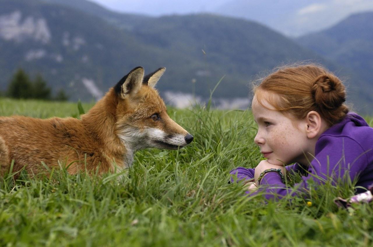 Der Fuchs und das Mädchen - Bild 6