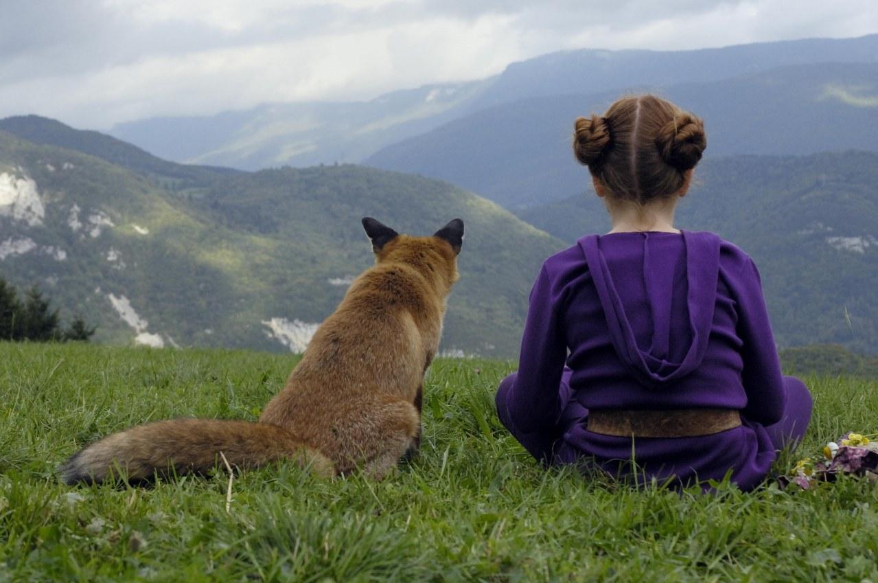 Der Fuchs und das Mädchen - Bild 8