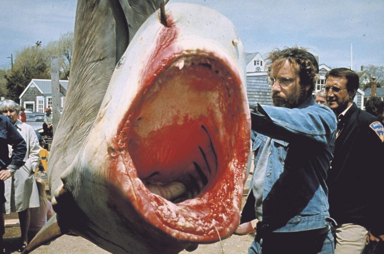 Der weiße Hai - Bild 6