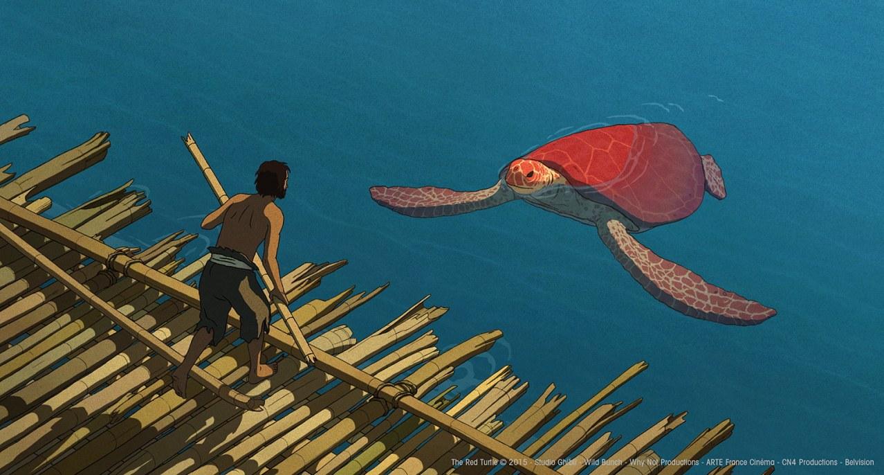Die rote Schildkröte - Bild 1