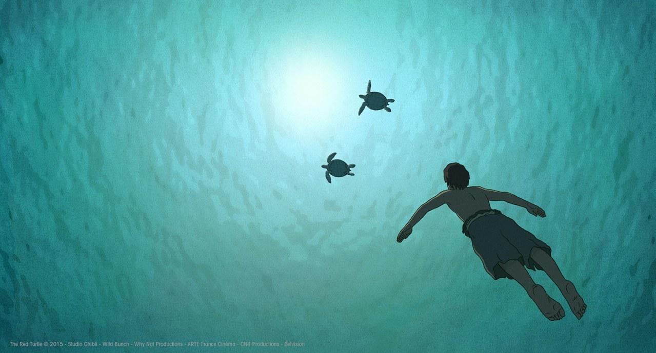 Die rote Schildkröte - Bild 2