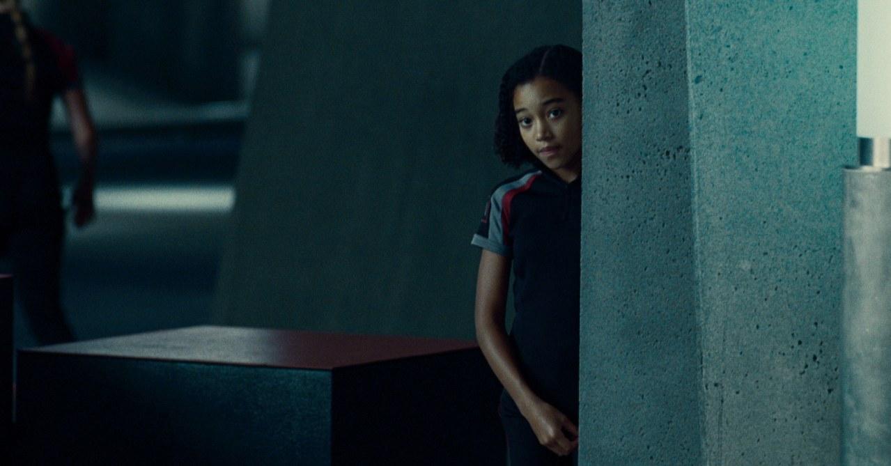 Die Tribute von Panem - The Hunger Games - Bild 11