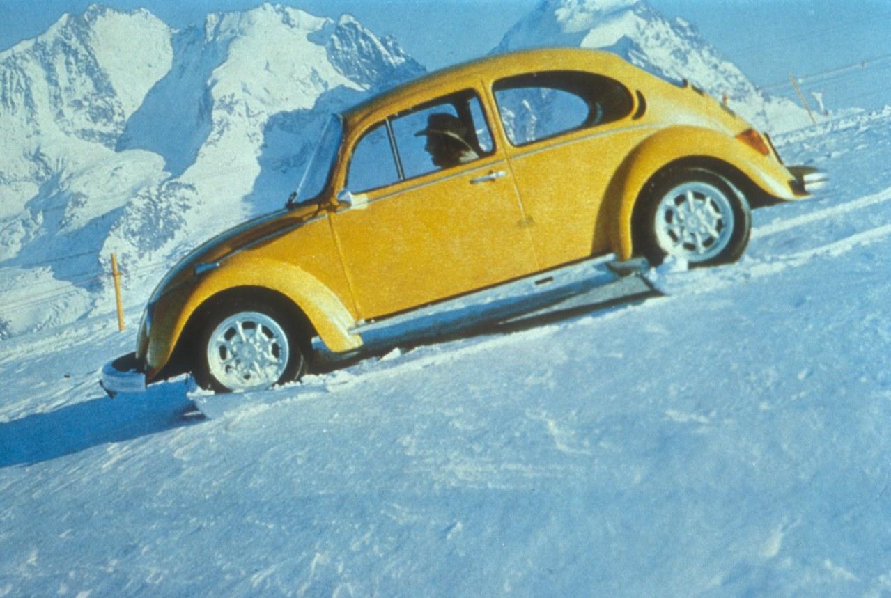 Ein Käfer auf Extratour - Bild 1