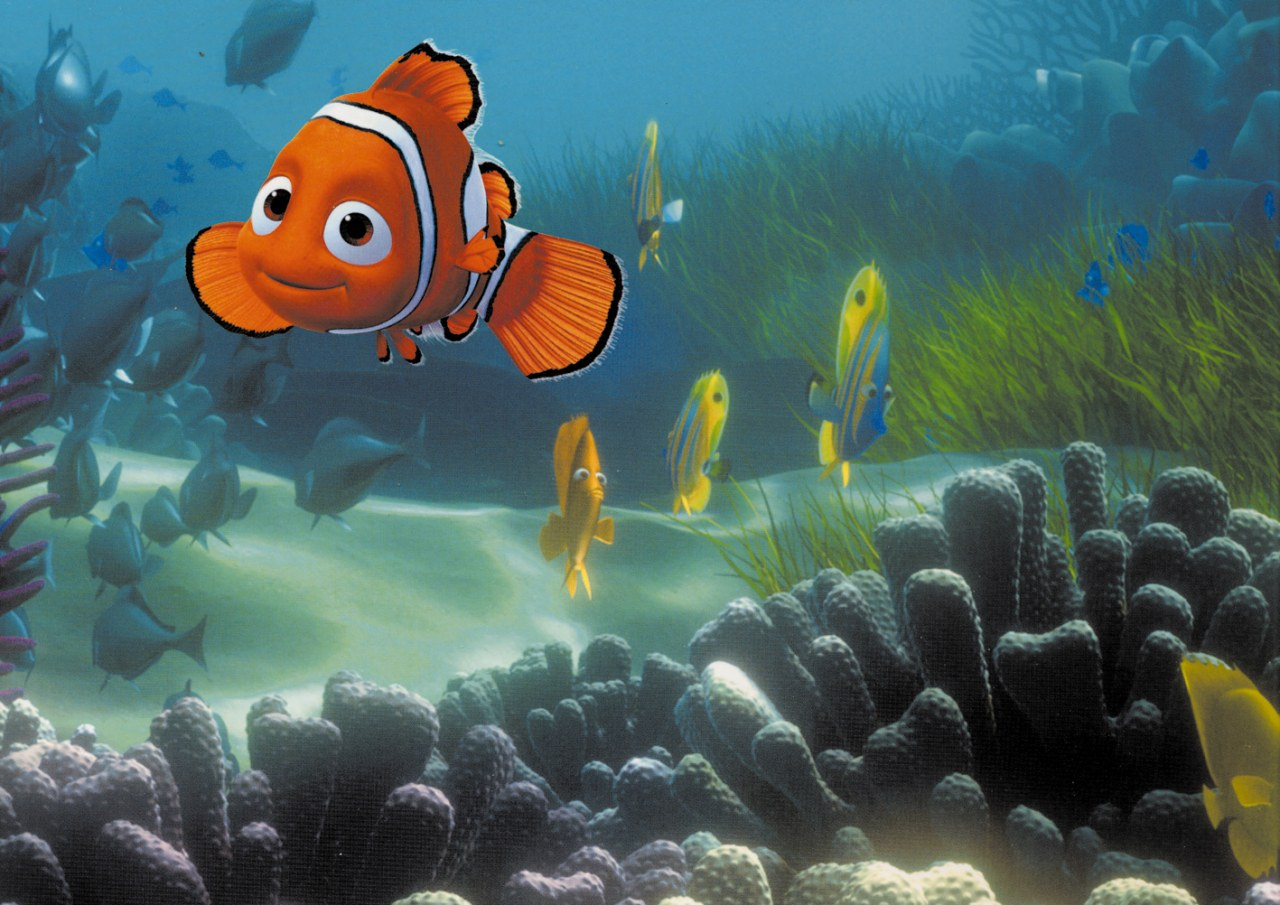 Findet Nemo - Bild 23