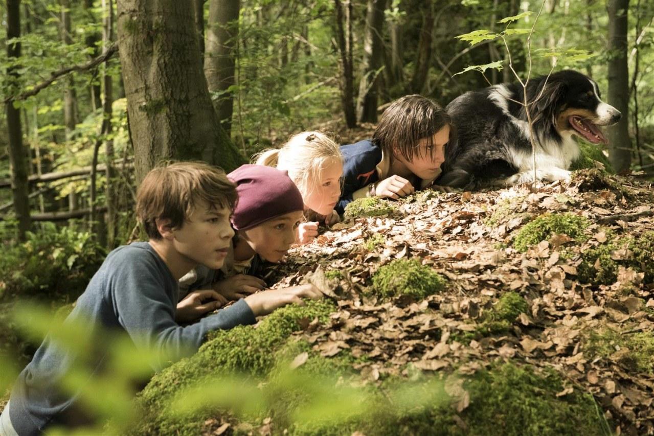 Fünf Freunde und das Tal der Dinosaurier - Bild 6