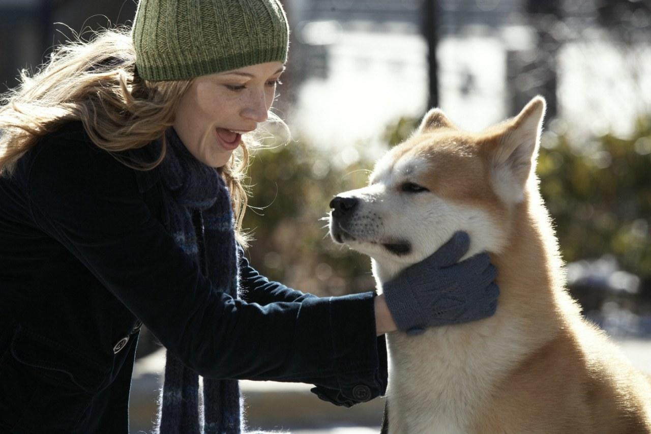 Hachiko - Eine wunderbare Freundschaft - Bild 4