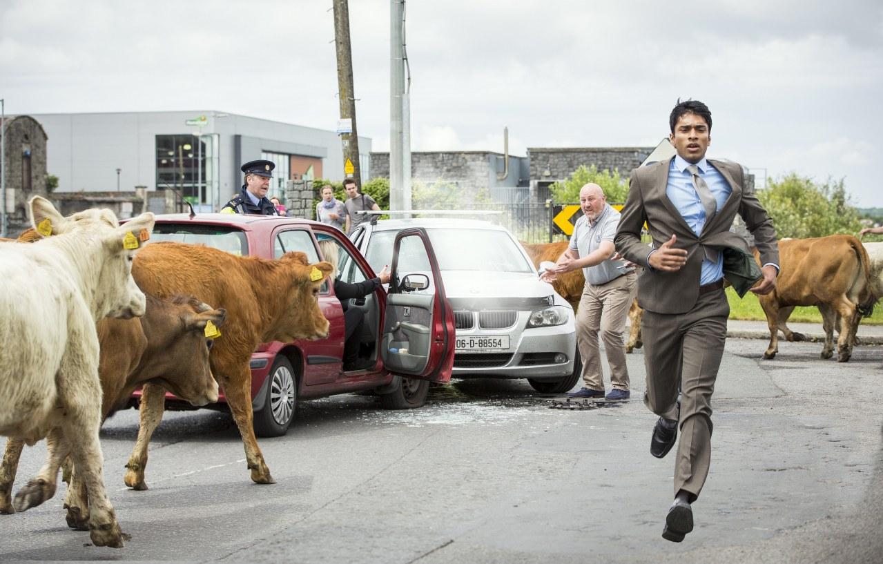 Halaleluja - Iren sind menschlich! - Bild 1