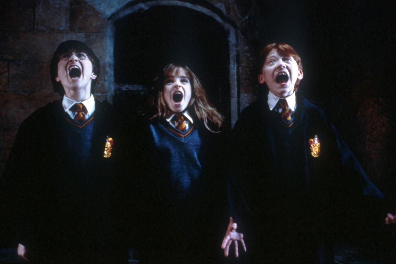 Harry Potter und der Stein der Weisen - Bild 11
