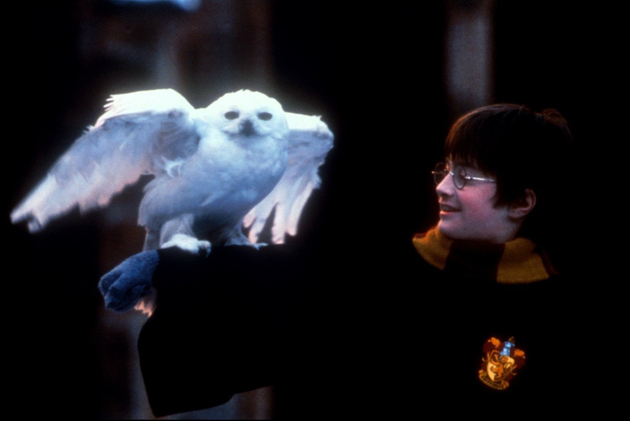 Harry Potter und der Stein der Weisen - Bild 21