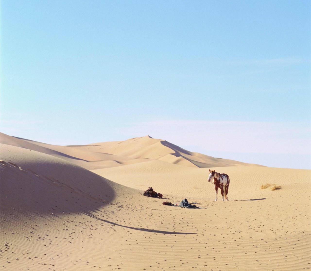 Hidalgo - 3000 Meilen zum Ruhm - Bild 9