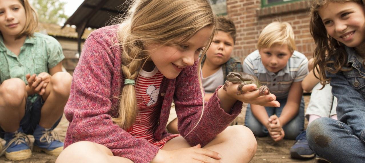 Hilfe, unser Lehrer ist ein Frosch - Bild 1