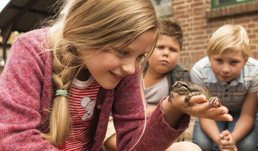 Hilfe, unser Lehrer ist ein Frosch - Bild 2