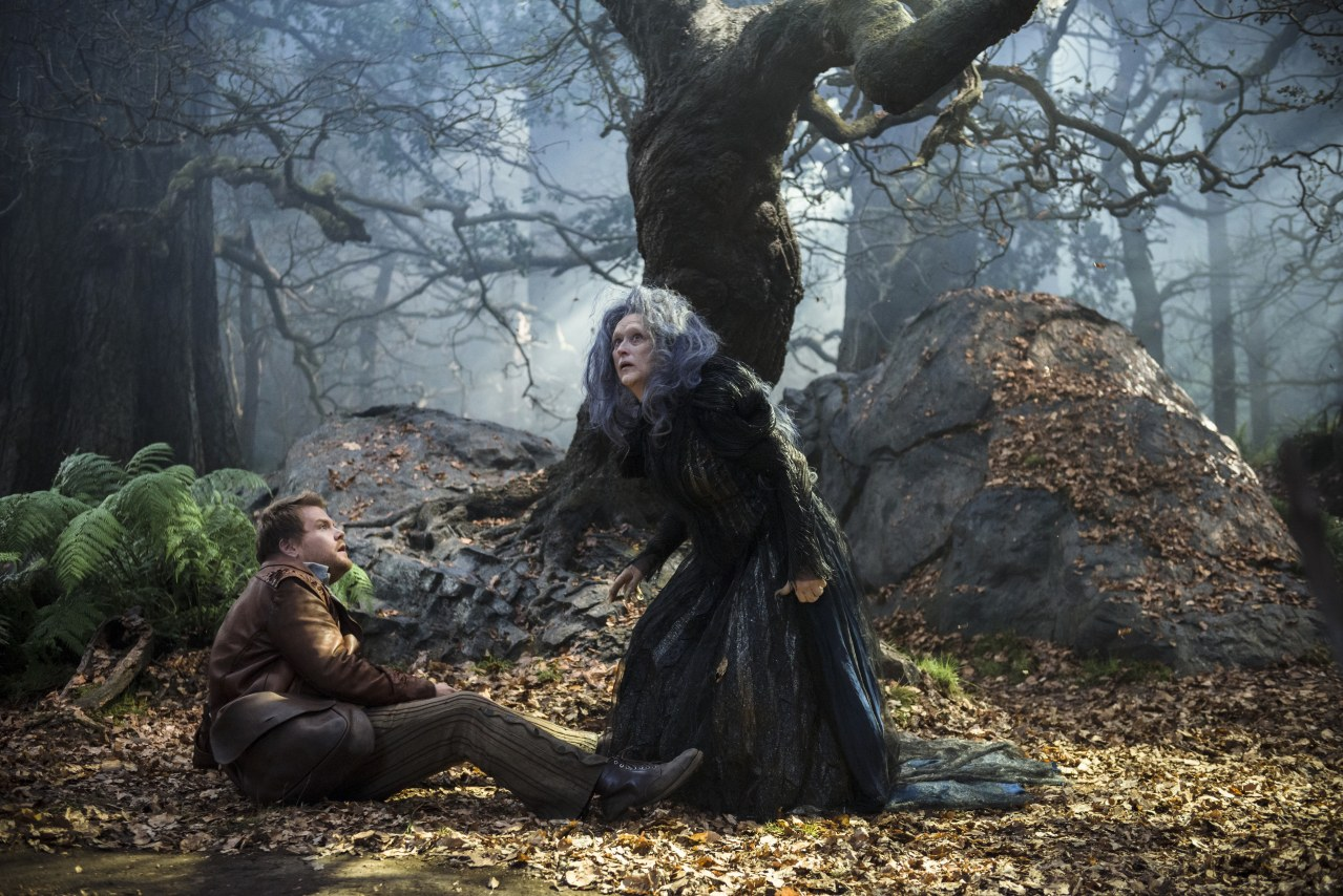 Into the Woods - Bild 1