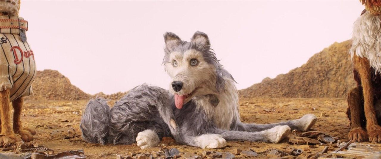 Isle of Dogs - Ataris Reise - Bild 5