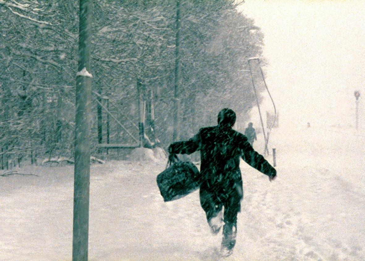 It's Winter - Bild 1