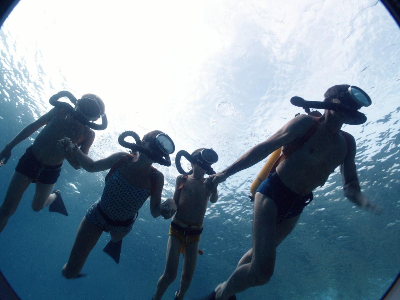 Jacques - Entdecker der Ozeane - Bild 6