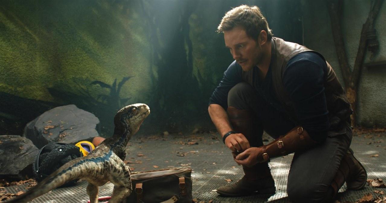 Jurassic World: Das gefallene Königreich - Bild 7