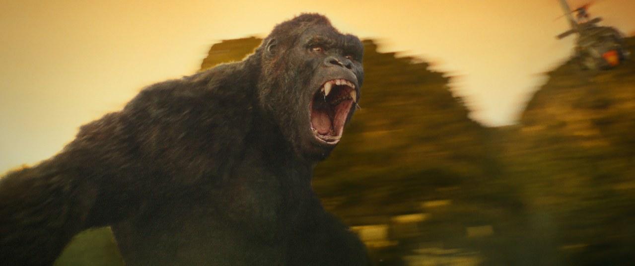 Kong: Skull Island - Bild 2