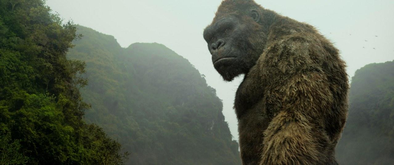 Kong: Skull Island - Bild 4