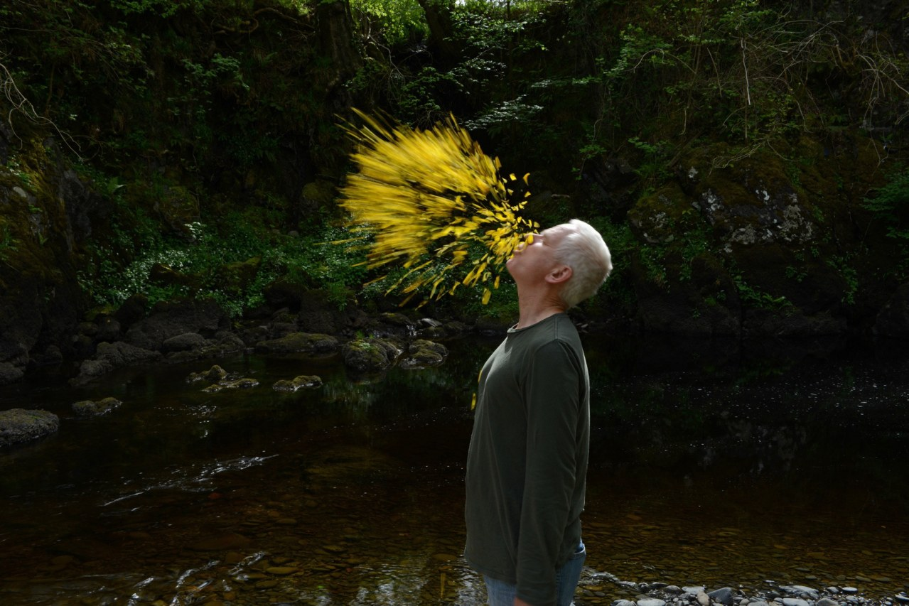 Leaning Into the Wind - Andy Goldsworthy - Bild 5