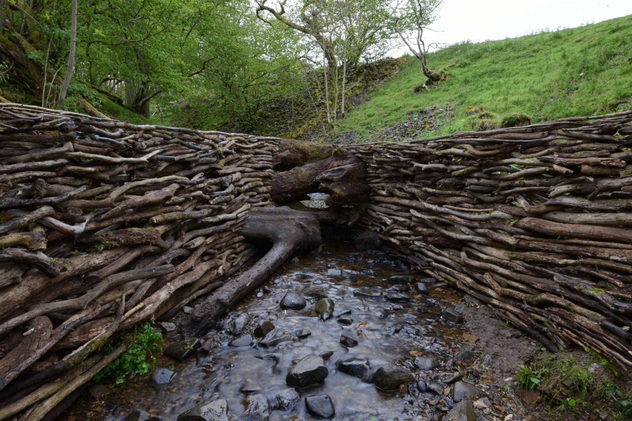Leaning Into the Wind - Andy Goldsworthy - Bild 6