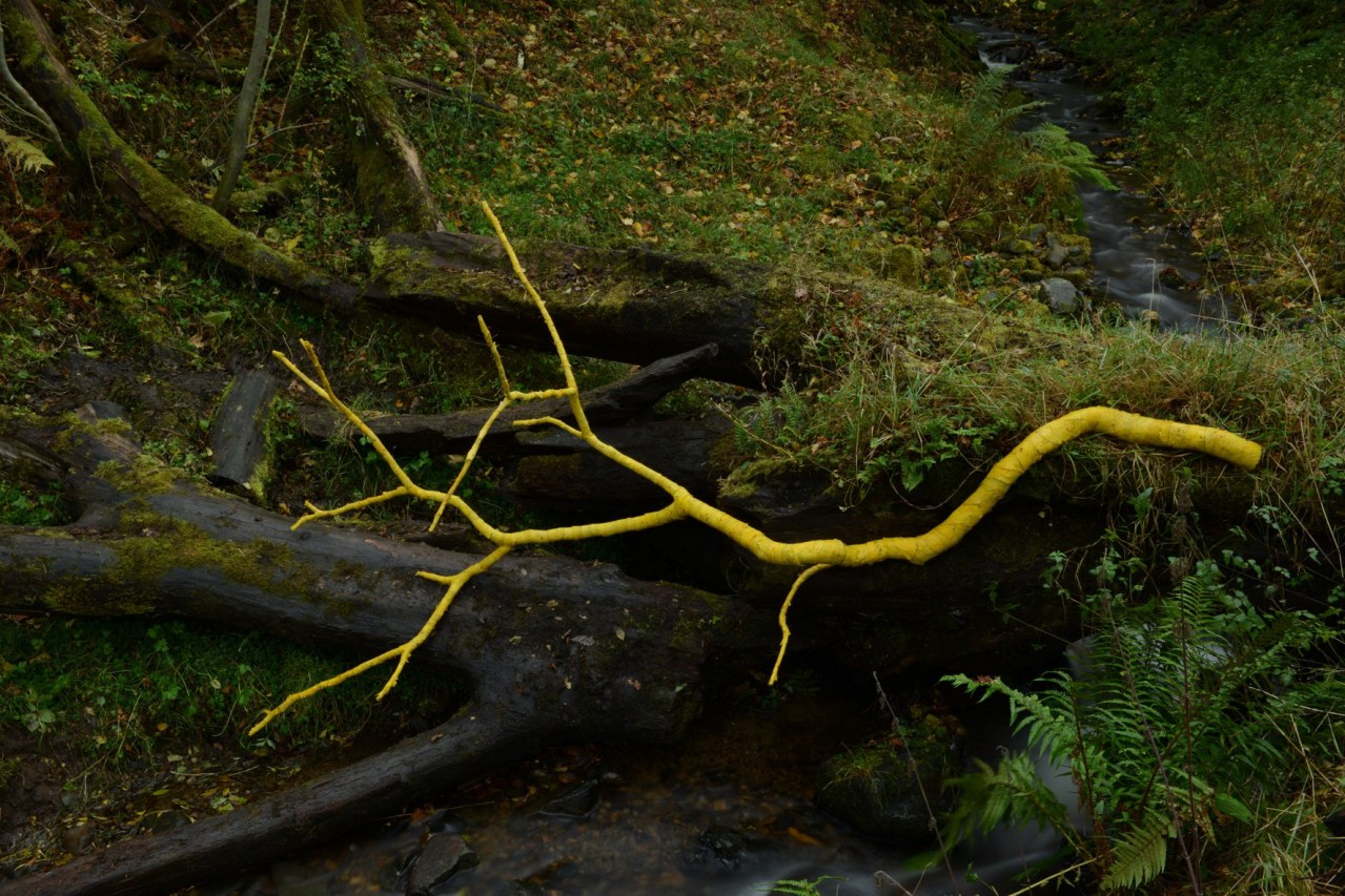 Leaning into the Wind - Andy Goldsworthy - Bild 7