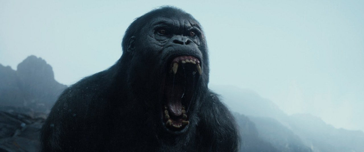 Legend of Tarzan - Bild 8