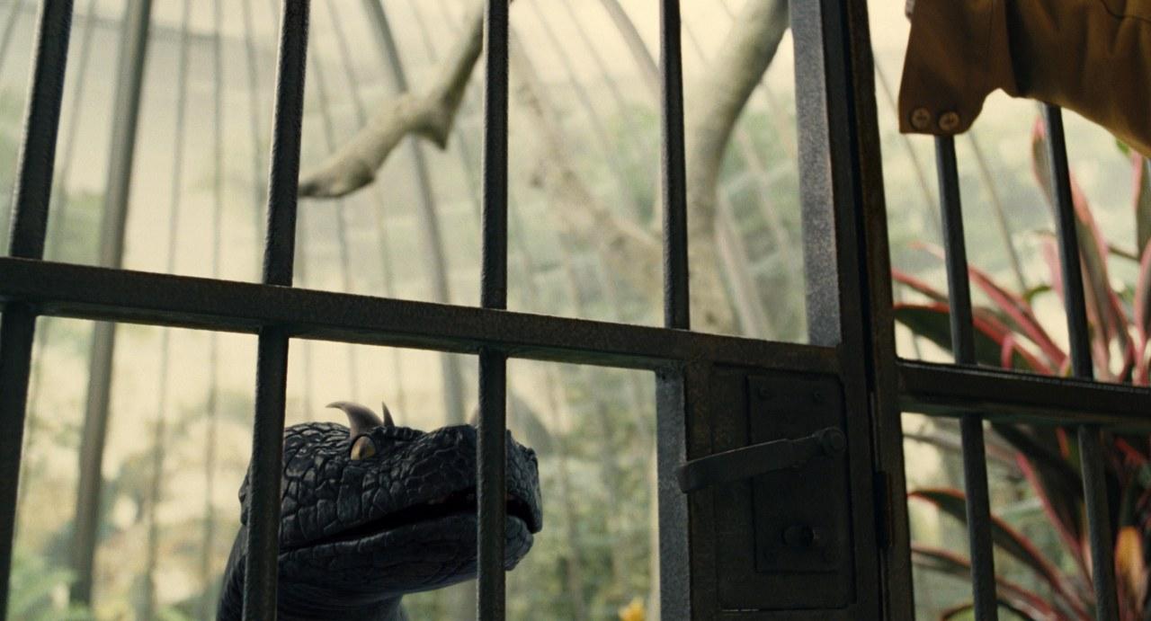 Lemony Snicket - Rätselhafte Ereignisse - Bild 34