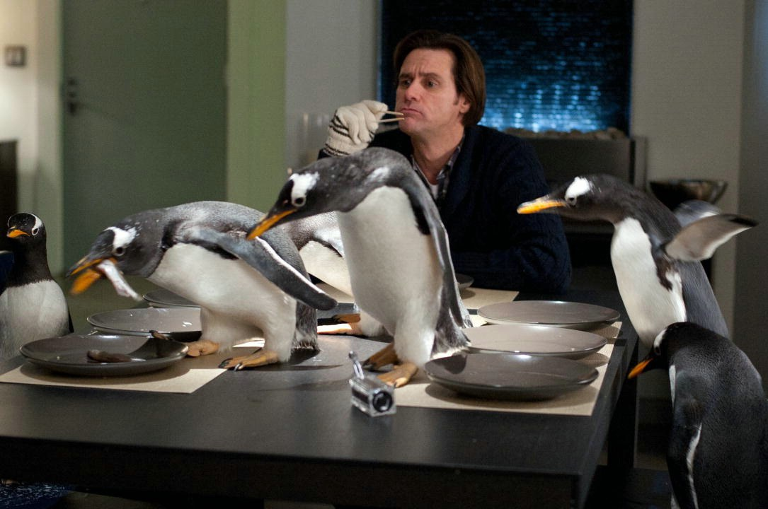 Mr. Poppers Pinguine - Bild 2