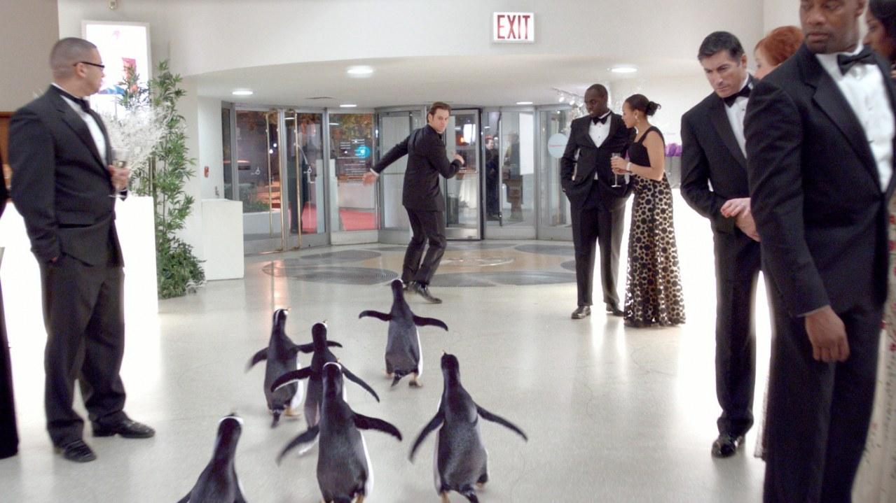 Mr. Poppers Pinguine - Bild 16